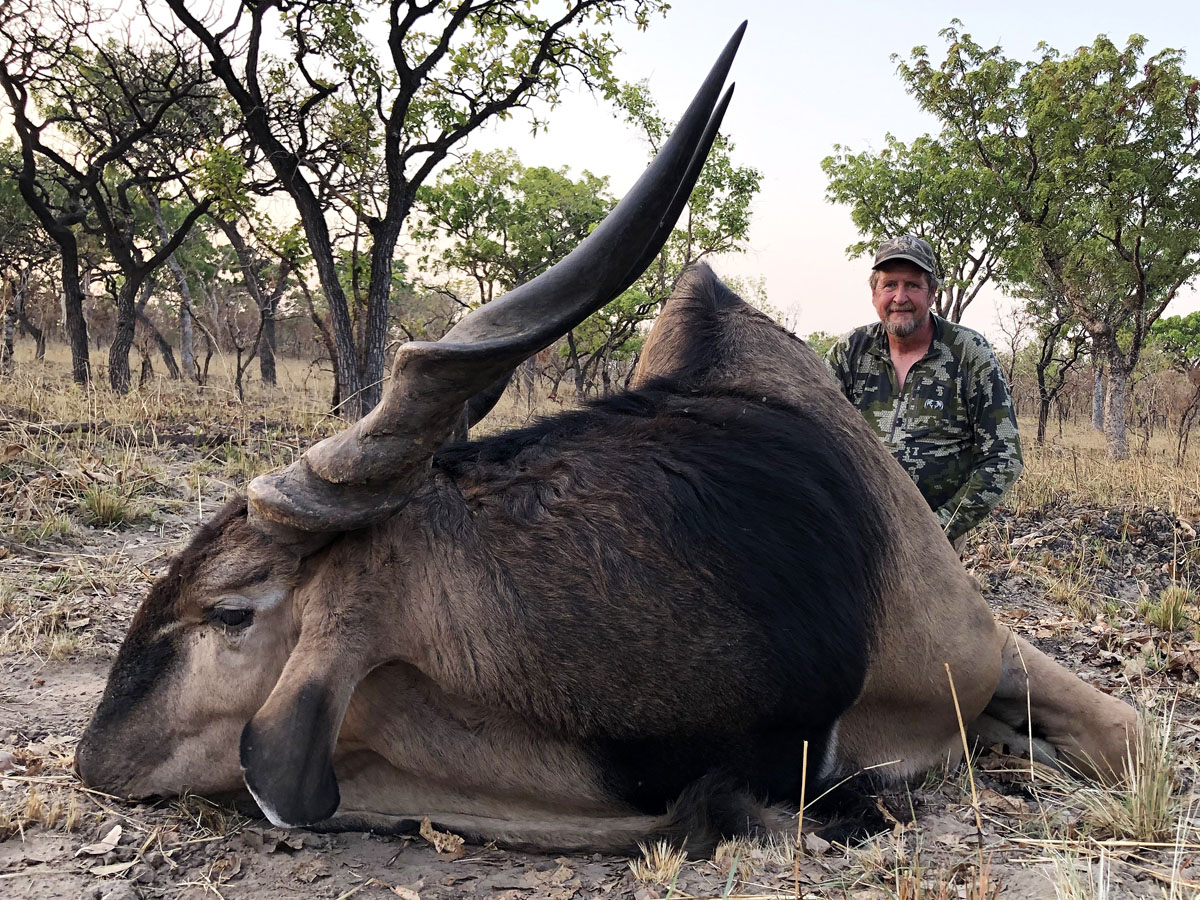 Lord Derby Eland trophy hunt in Cameroon with Tim Reiger