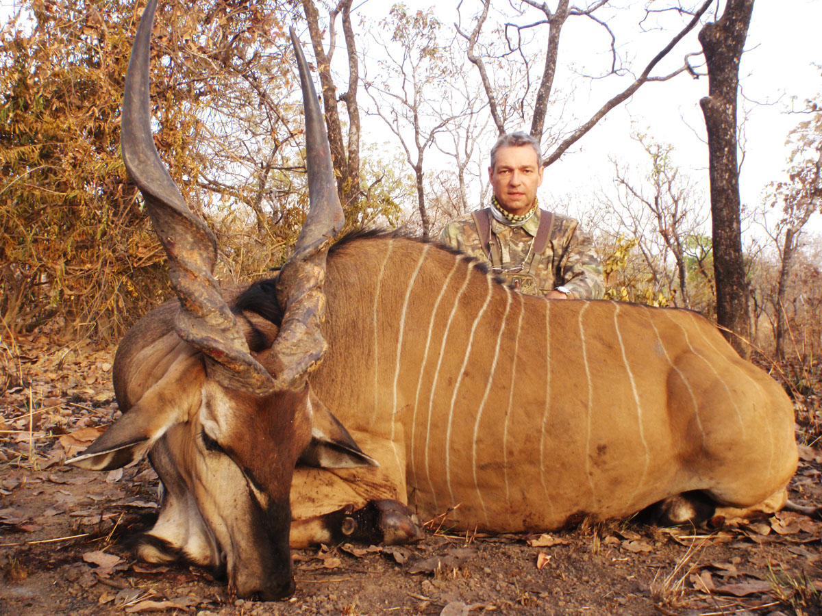 Lord Derby Eland hunt in Cameroon