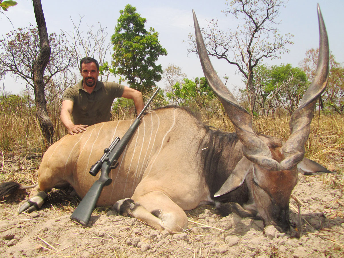 Lord Derby Eland hunting in Cameroon