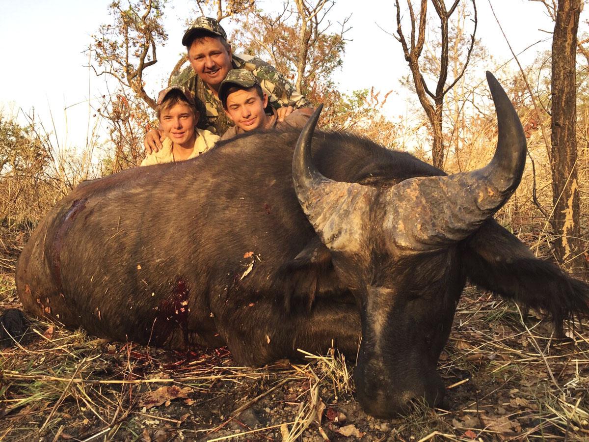 Savannah Buffalo hunt in Cameroon