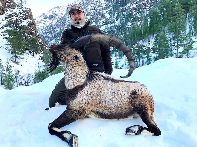 Hunter with a big bezoar ibex trophy in Turkey