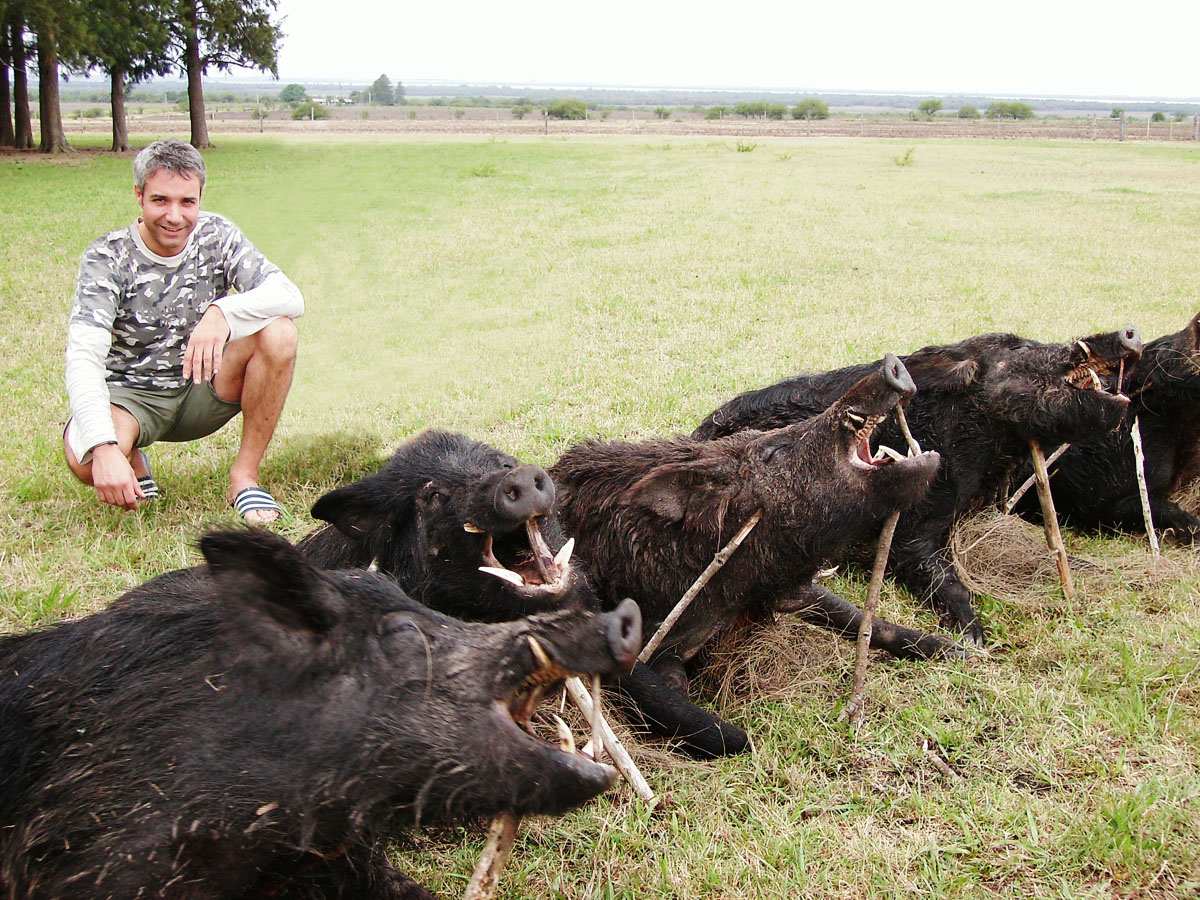 Hunter showing his wild boar trophies in Argentina