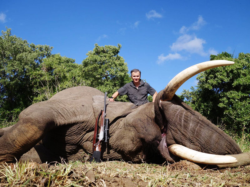 Hunter with an elephant trophy in Zimbabwe