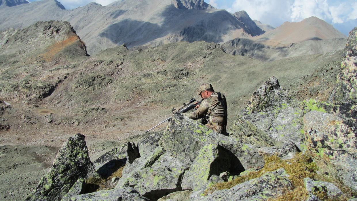 Hunter with rifle when hunting Kuban Tur in the Caucasus Russia