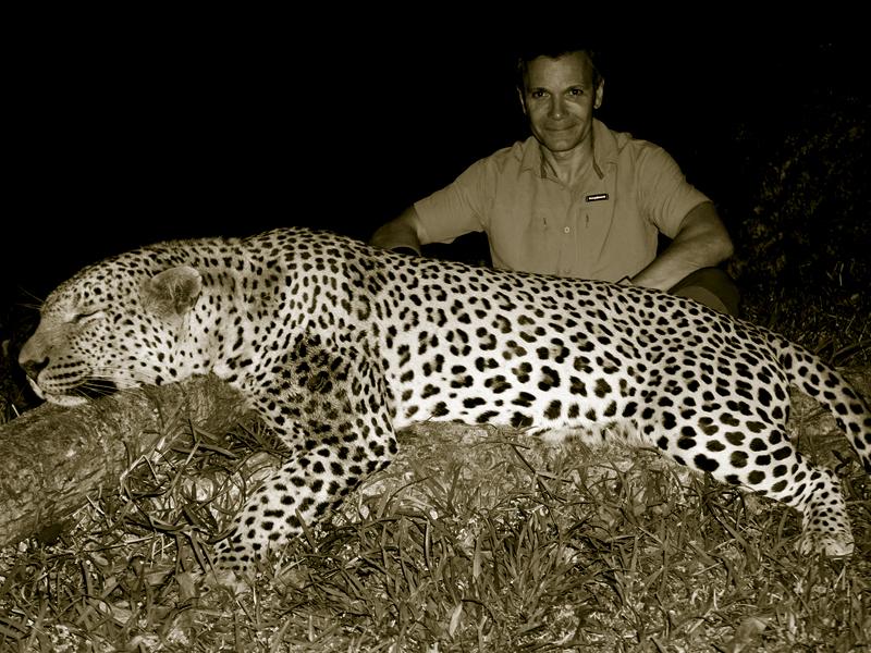 Leopard hunt in Zimbabwe