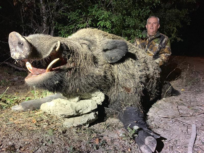Hunters with a big wild boar trophy in Turkey
