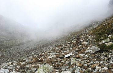 Climbing the mountain down while hunting the Kuban Tur in the Caucasus