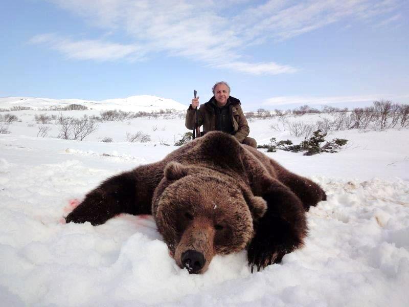 Brown Bear hunt in Kamchatka