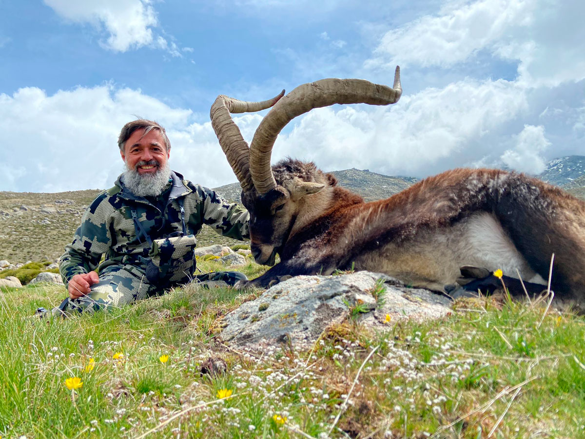 Gold medal Gredos Ibex trophy hunt in Spain